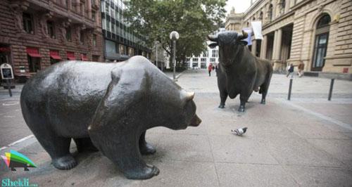 خرس بورس گاو بورس