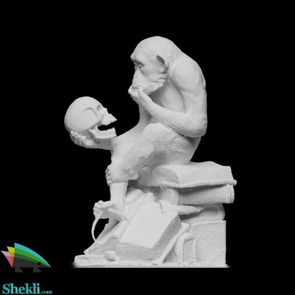 مجسمه-انسان-خردمند