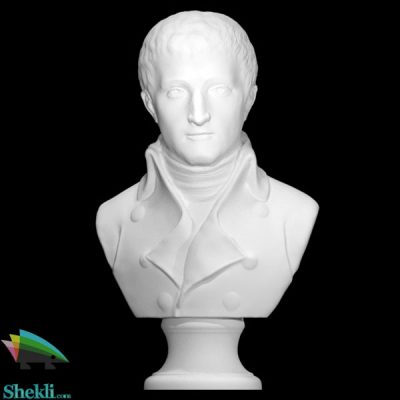مجسمه ناپلئون بناپارت