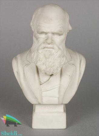 مجسمه داروین
