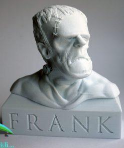 خرید فرانکنشتاین